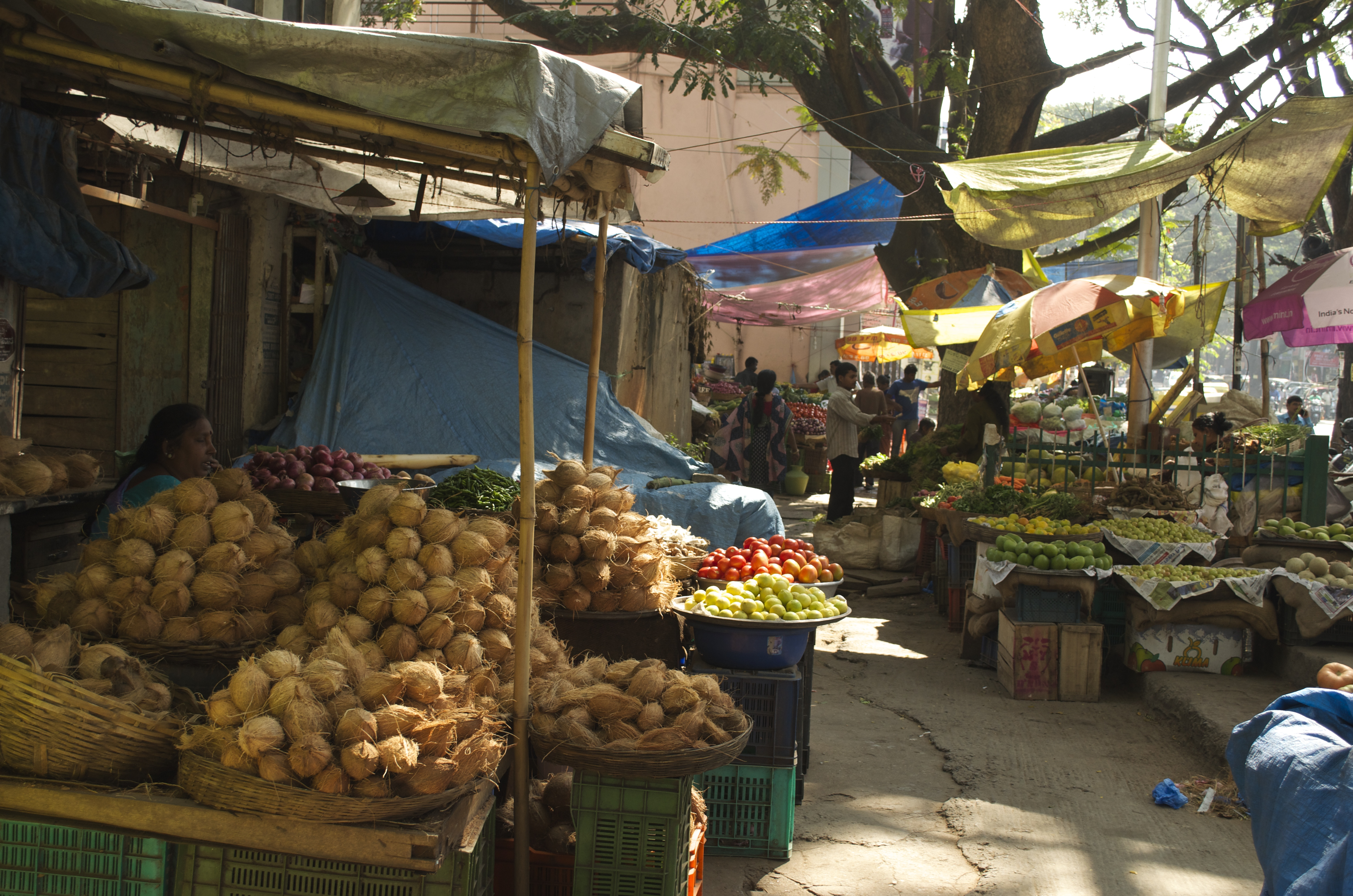Indian Market Gandhi Bazar – South...