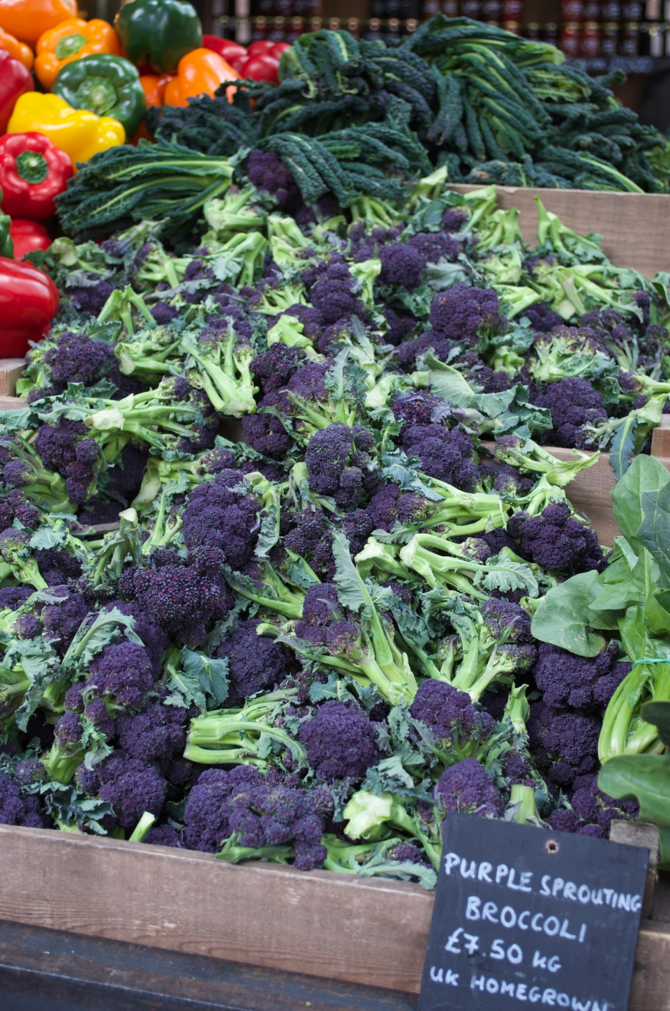 Purple sprout broccoli